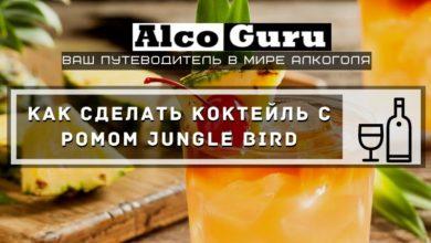 Photo of Как сделать коктейль с ромом Jungle Bird